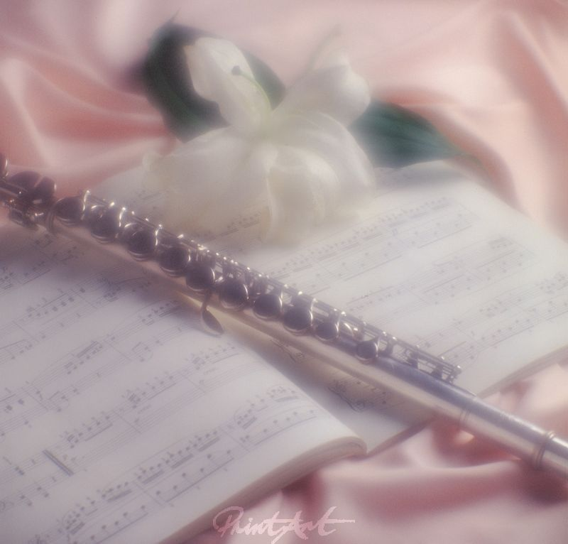 Querflöte Romantik Musikinstrumente