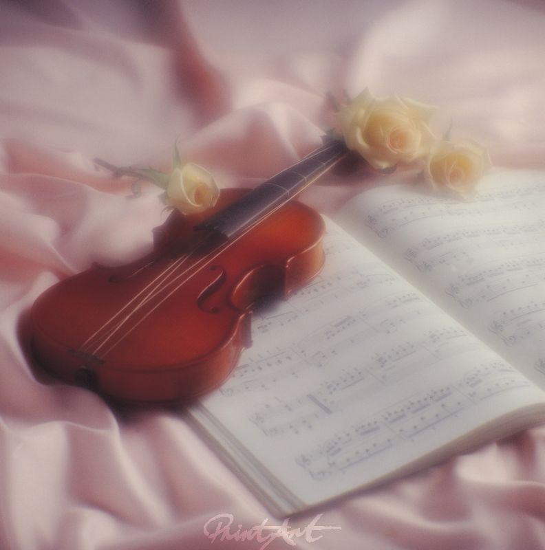Geige Romantik Musikinstrumente