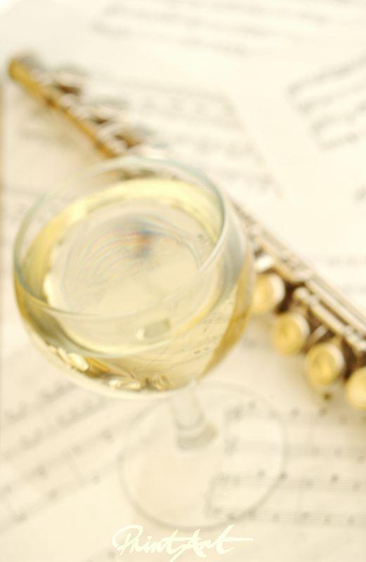 Querflöte / Noten Musikinstrumente