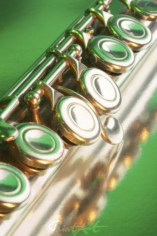 Querflöte Grün Musikinstrumente