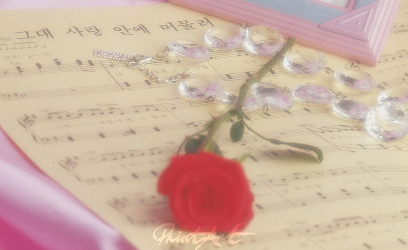 Noten / Rose Musikinstrumente