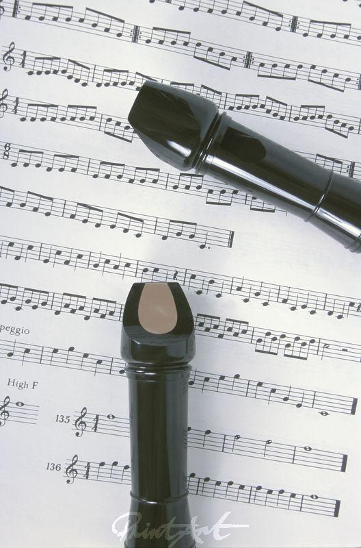 Blockflöte/Noten Musikinstrumente