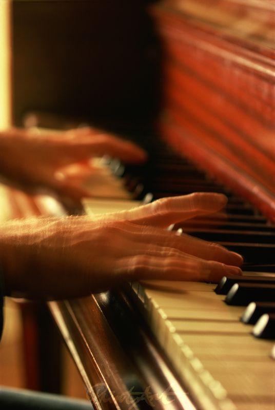 Klavier Musikinstrumente