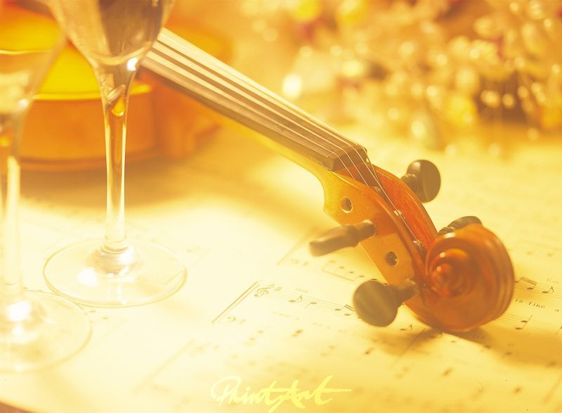 Stilleben / Geige Musikinstrumente