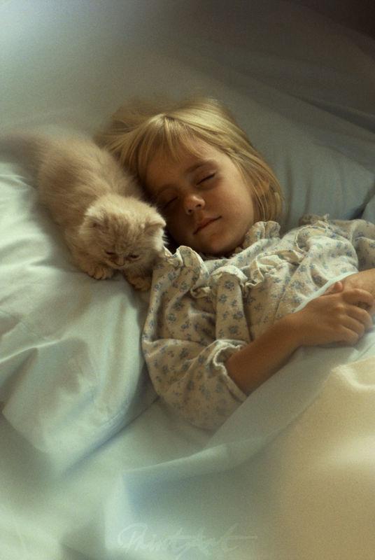 Kind mit Katze Katzen