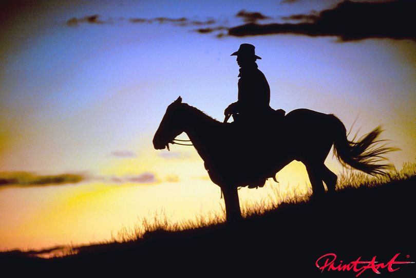Cowboy Sunset Pferde