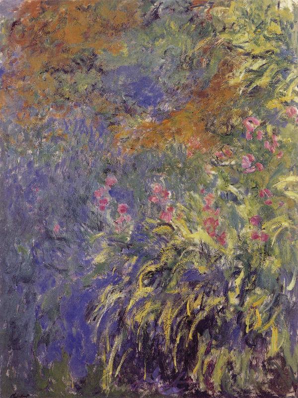 Iris Monet Claude