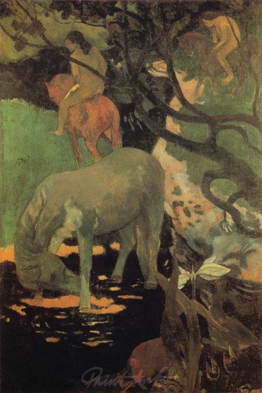 Das weisse Pferd Gauguin Paul