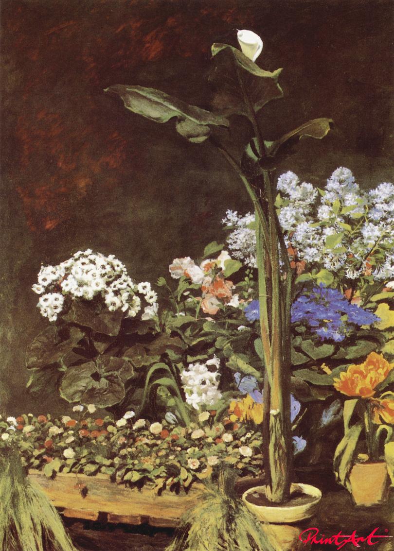 Kallapflanze in einem Garten Renoir Pierre Auguste