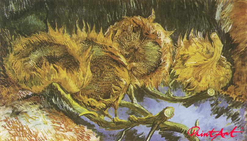 Vier Sonnenblumen Van Gogh Vincent