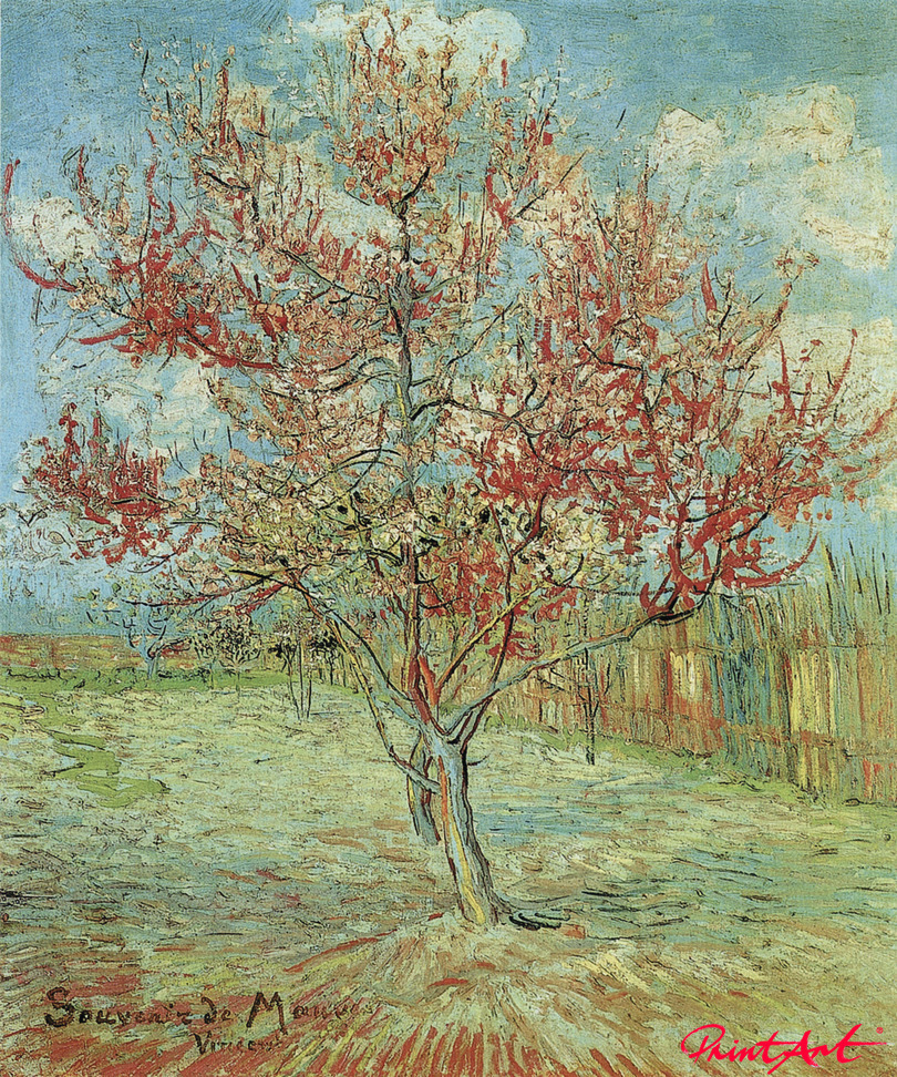Blühender Pfirsichbaum Van Gogh Vincent