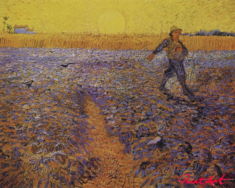 Der Sämann (nach Millet) Van Gogh Vincent