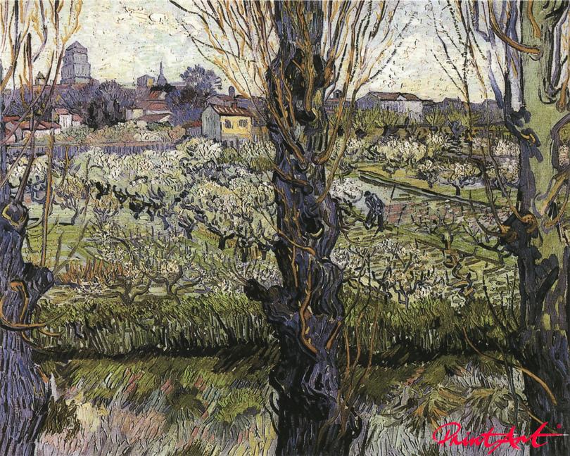 Blick auf Arles Van Gogh Vincent