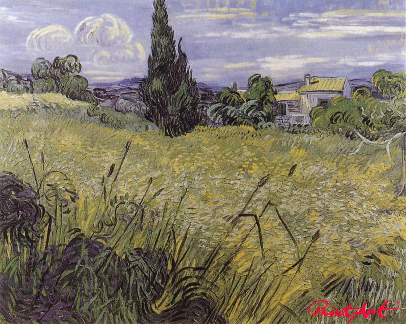 Grünes Weizenfeld mit Zypresse Van Gogh Vincent