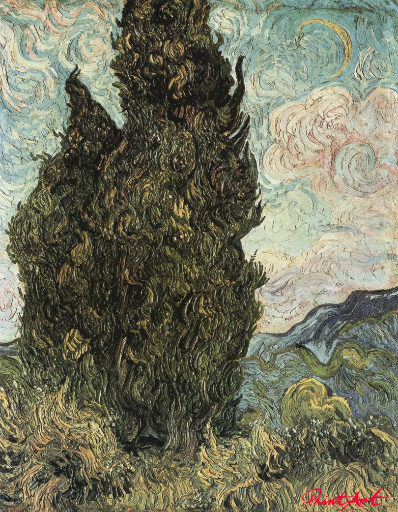 Zwei Zypressen Van Gogh Vincent