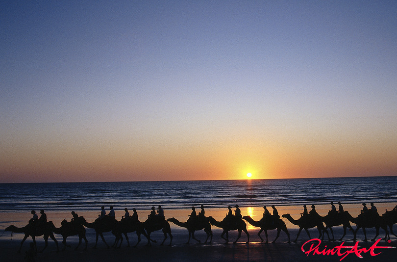 24229975sundown_cameltrain Sonnenuntergänge