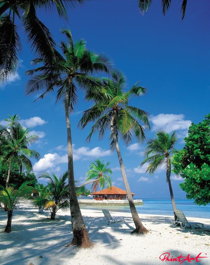 Palmenstrand mit Hütte Strände