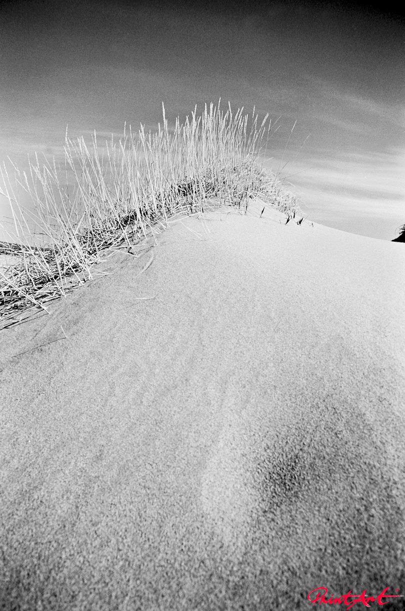 Stranddüne Strände