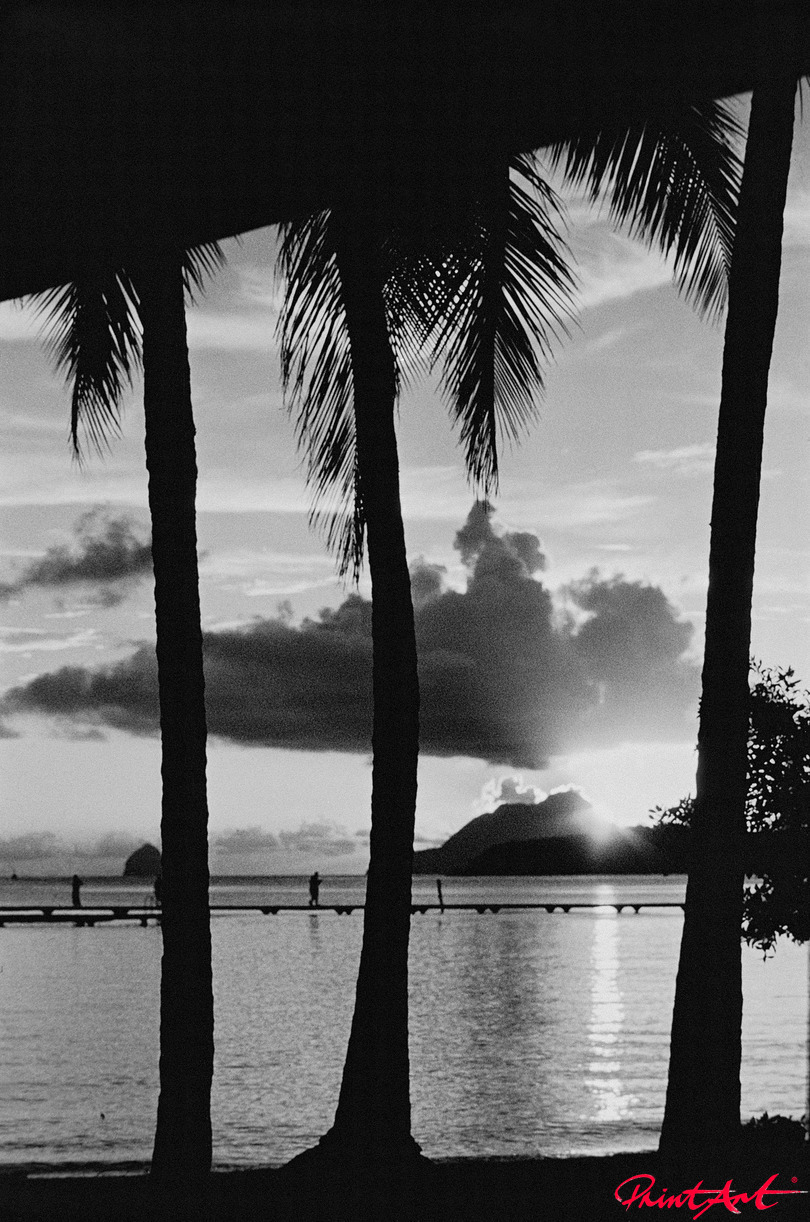 Mit Palmen Strände