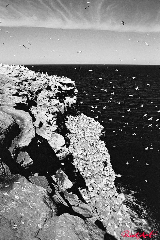 Felsklippe mit Meer Strände