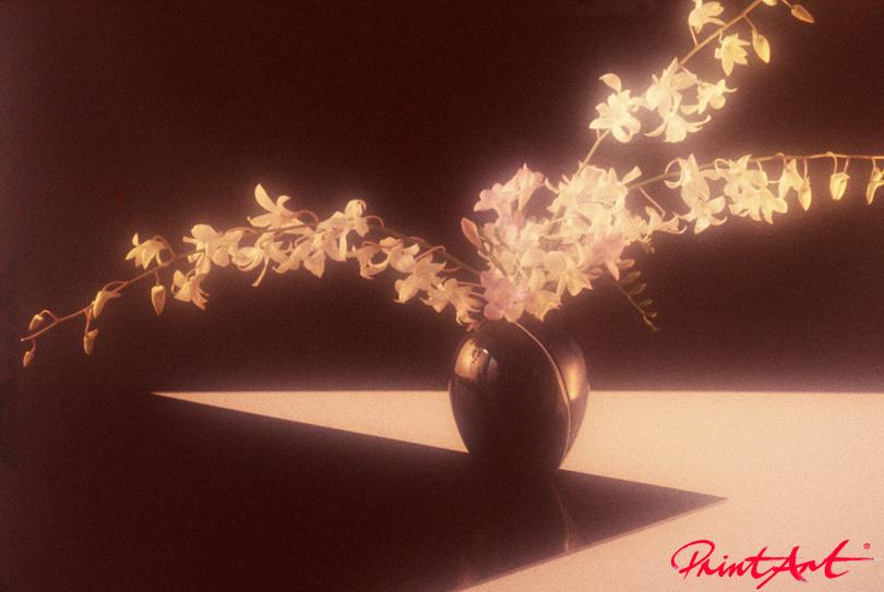 Blütenzweige in braun Blumen
