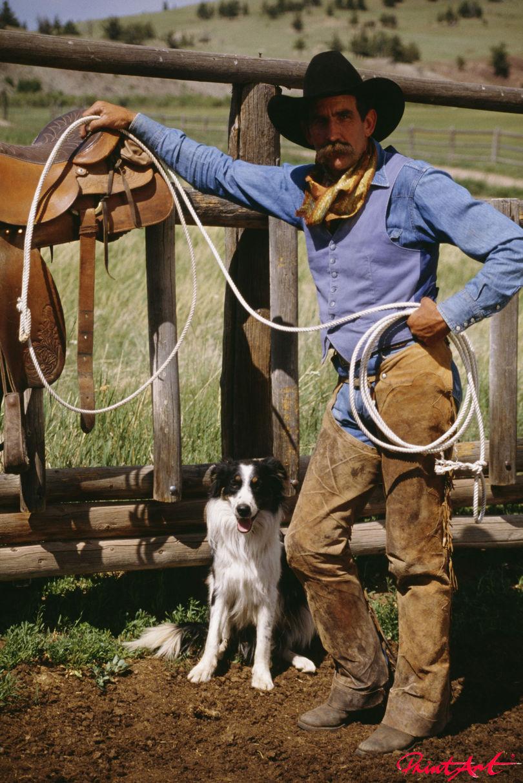 Cowboy mit Hund Hunde