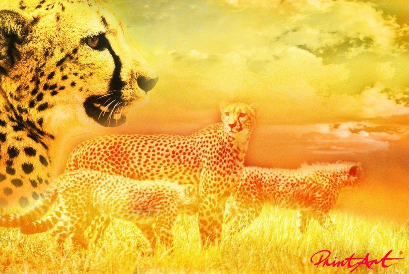 Gepard Gemälde Wildtiere