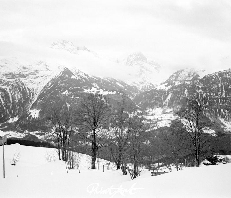 Schnee Bergkulisse Bäume