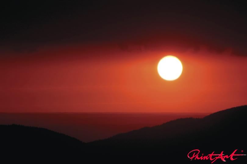 Sommersonne Tapeten - Vlies Tapeten