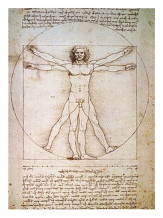 Il corpo umano Kunstdruck Da Vinci Leonardo