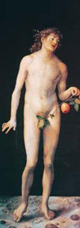 Adam Dürer Albrecht