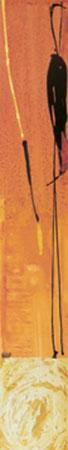 Acantho II Kunstdruck Abellan-Solano