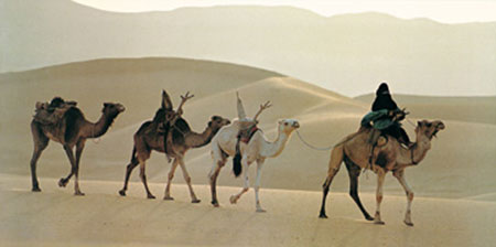 Caravane, Niger Kunstdruck Ascani Maurice