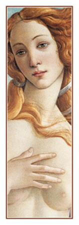 Birth of Venus Kunstdruck Botticelli Sandro
