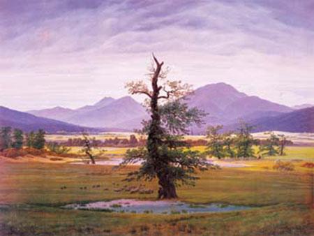 Der einsame Baum Friedrich Caspar David