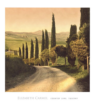 Country Lane, Tuscany Kunstdruck Carmel Elisabeth