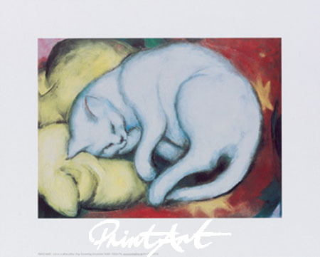 Cat on a yellow pillow Kunstdruck Marc Franz