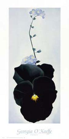 Pansy Kunstdruck O Keeffe Georgia