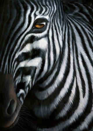 Zebra I Plath Jutta