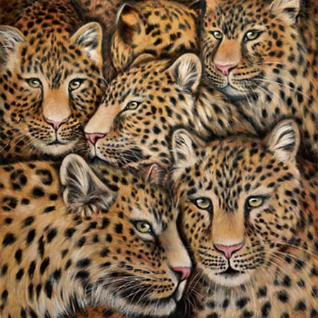 Leopardenmix Plath Jutta