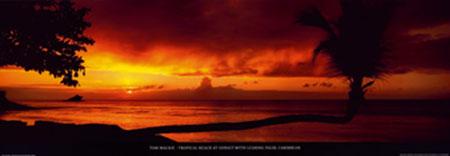 Tropical Beach at Sunset Kunstdruck Mackie Tom