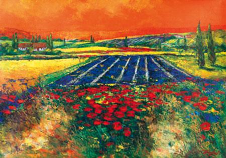 Provence Madjid