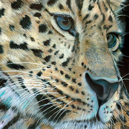 Leopard Moore Michael