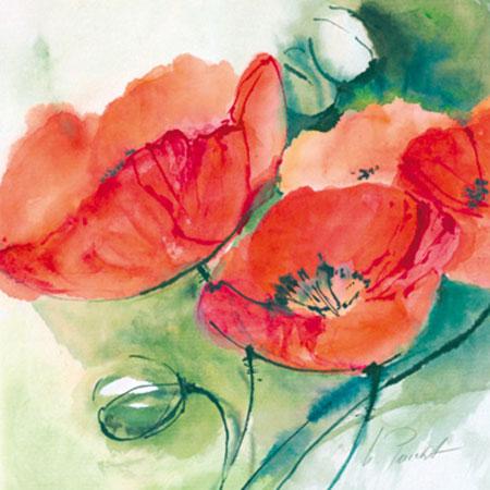 Mohnblüten Peuckert Marta