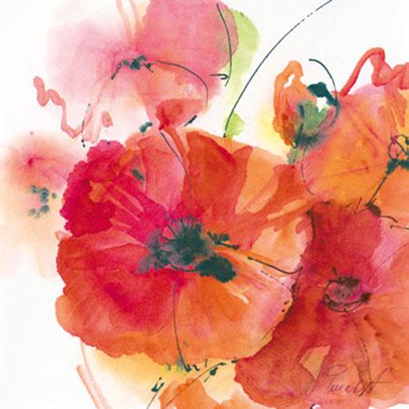 Mohnblüte in Gesellschaft Peuckert Marta