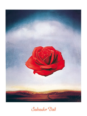 Rose meditative Kunstdruck Dali Salvador