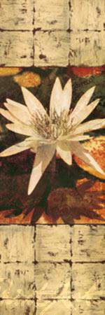 Waterlily Panel I Kunstdruck Seba John