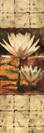 Waterlily Panel II Kunstdruck Seba John