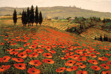 Hills of Tuscany I Kunstdruck Wynne Steve