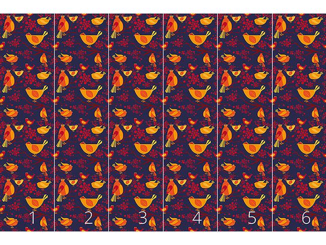 Designtapete Vogel Versammlung